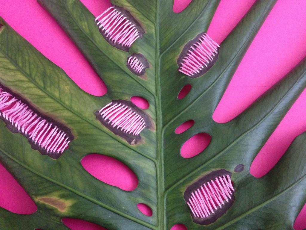 Detalhe da obra 'Pink Intervention', bordado em planta de Juliana Curi