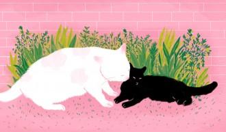Mãe gata | Ilustração por Bárbara Malagoli para a Ovelha